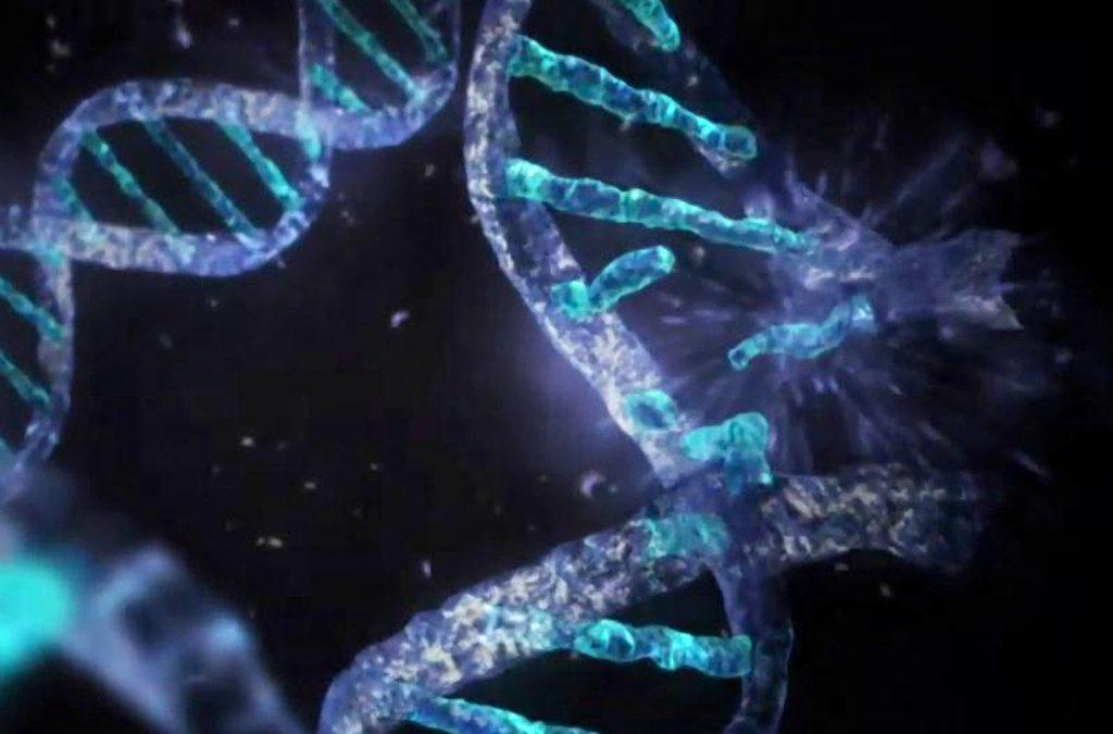 Возможна ли мутация у человека из-за радиации?